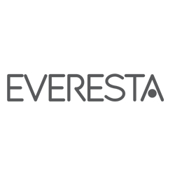 Everesta - consultancy, training services and HR development